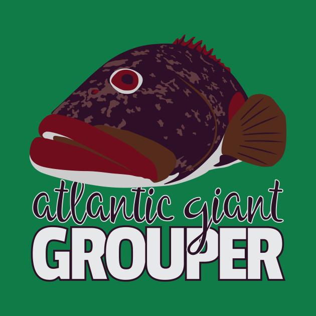 Atlantic Goliath Grouper