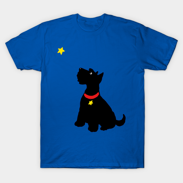 Star gazing Scottie