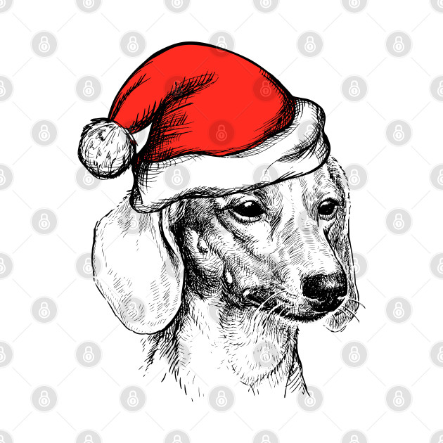 Dachshund Wearing Santa Hat