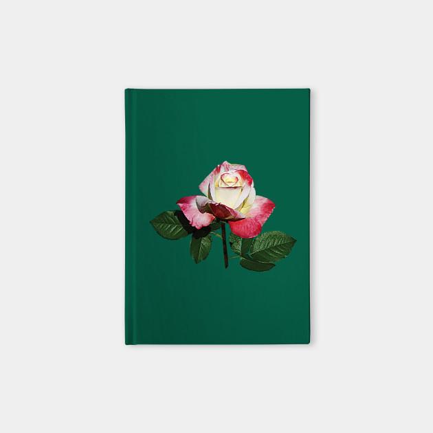 Roses Rosebud Summer Fashion Rose Notebook Teepublic