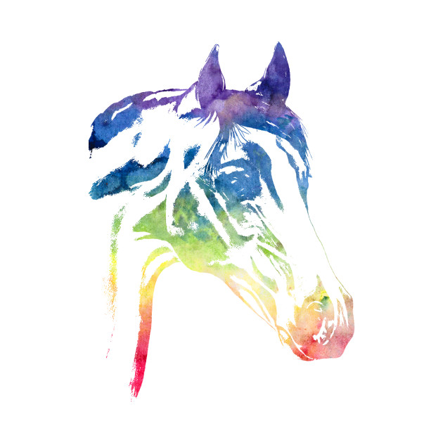 Rainbow Horse Apparel