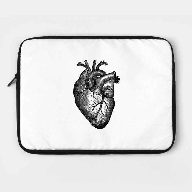 Vintage Heart Anatomy - Anatomical Heart - Laptop Case | TeePublic