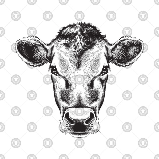 Black And White Cow Face Sketch