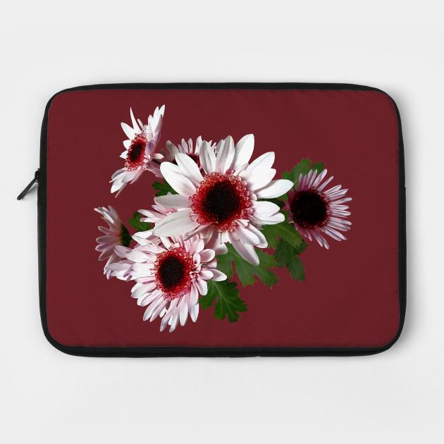 Chrysanthemums - Light Pink Mums With Dark Pink Center