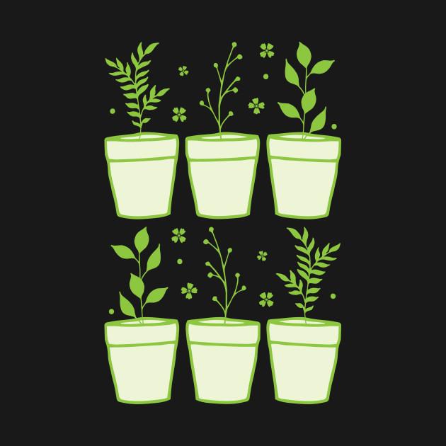 six pot plants
