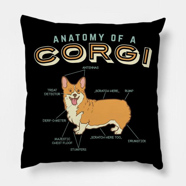 Anatomy Of A Corgi Shirt Funny Anatomy Shirts Funny Corgi Shirt