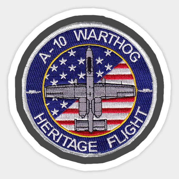 US  AIR FORCE A-10 Thunderbolt II DEMO TEAM EAST MILITARY PATCH