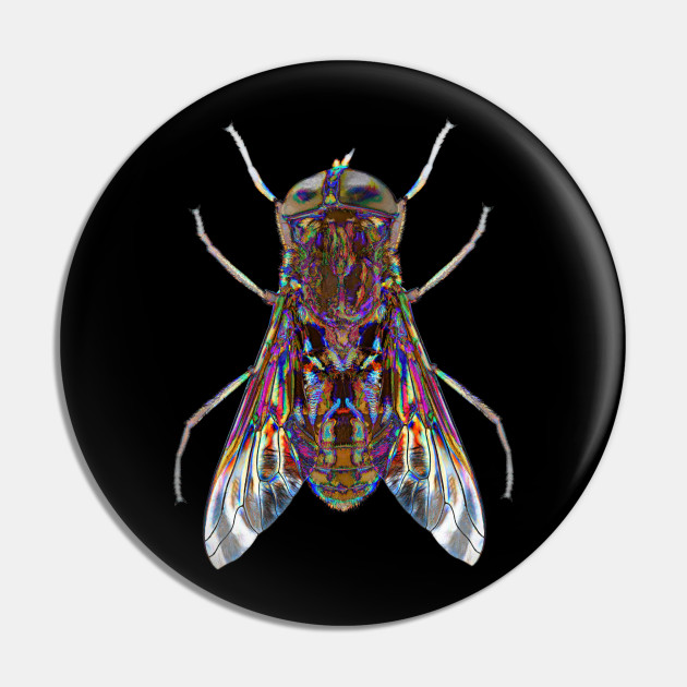 Horsefly Attack