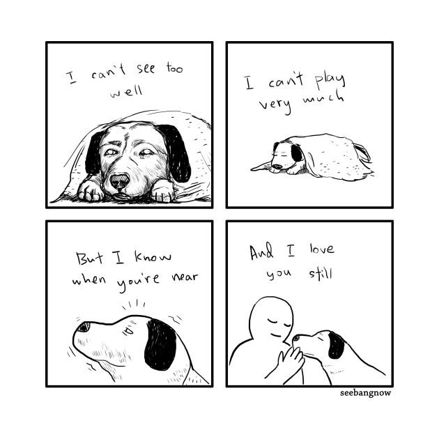 Dog Loves you still