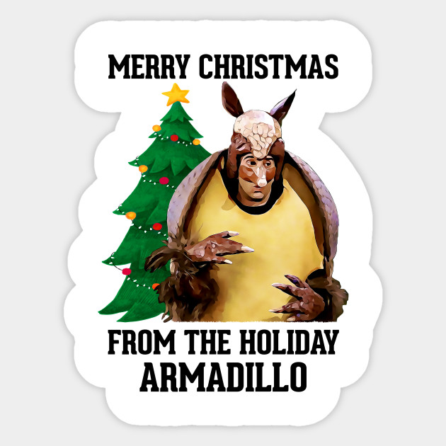 Image result for holiday armadillo