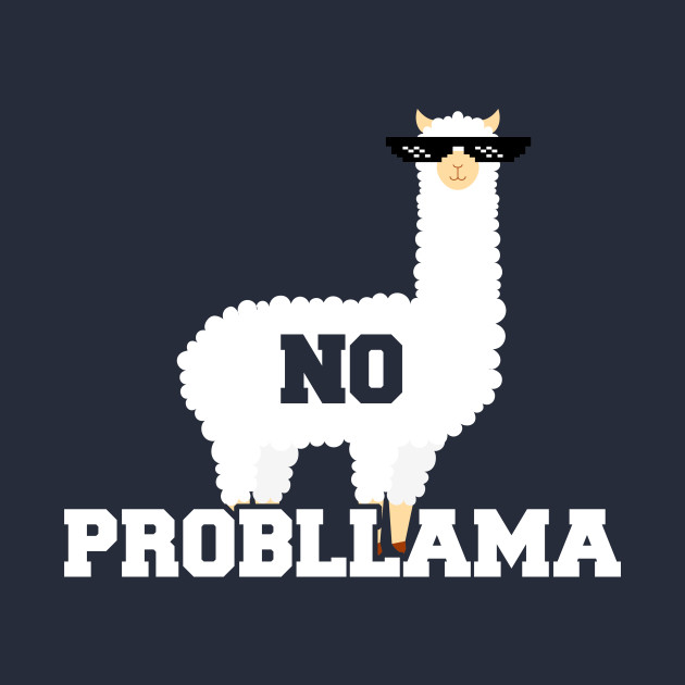 No Probllama Funny Animal Always Be a Llama
