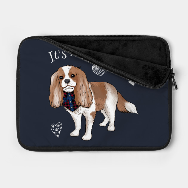 It's all about my Cavalier King Charles Spaniel