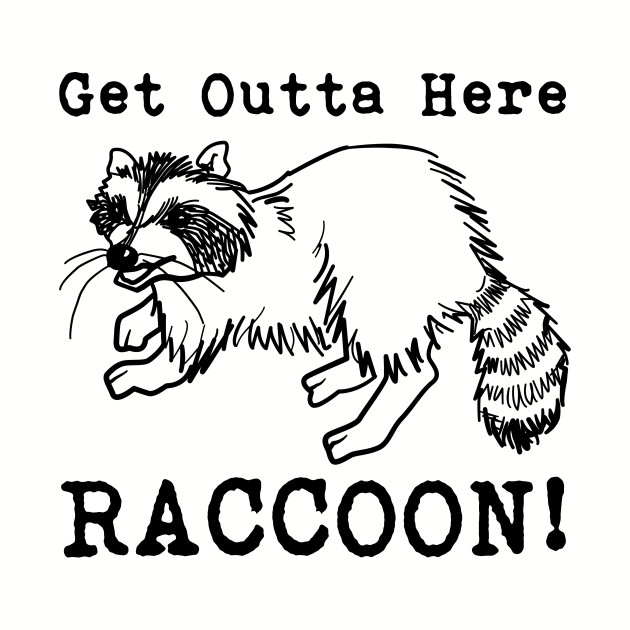 Get Outta Here Raccoon!