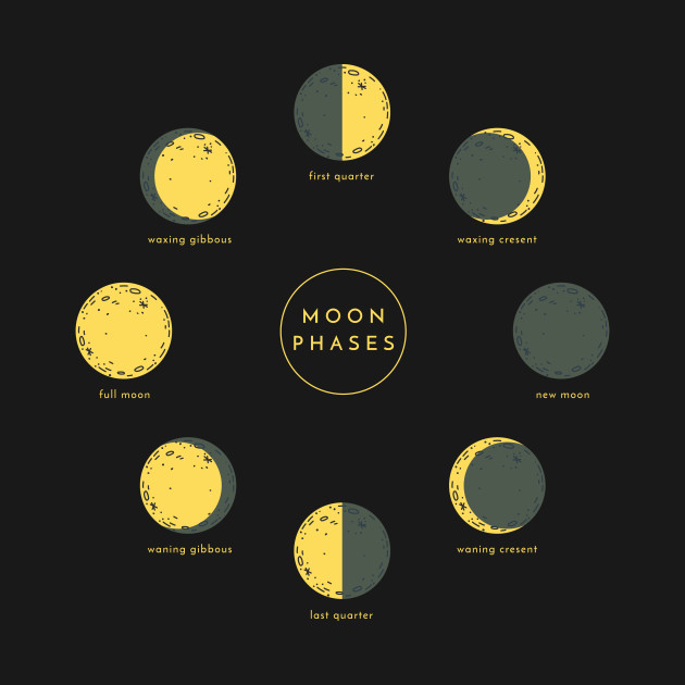 Moon Phases Different Yellow Moons