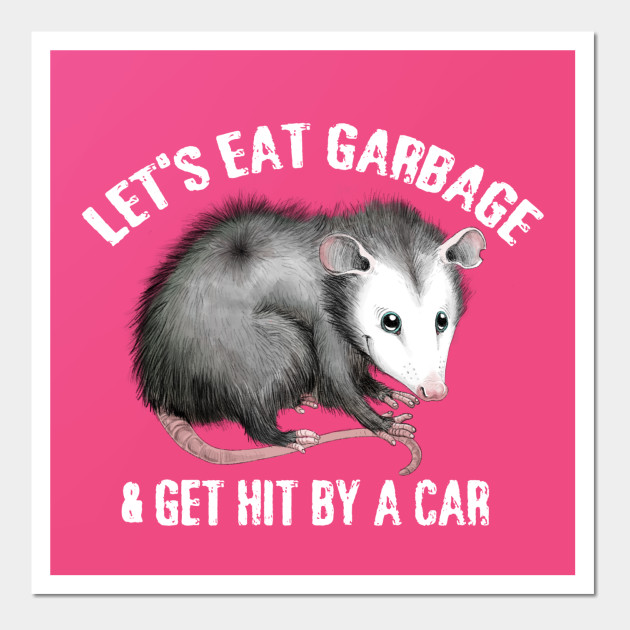 Opossum Posters And Art Prints Teepublic