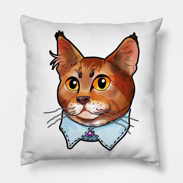 Pixie bob Pixie-Bob Pixiebob Cat Face Cats funny