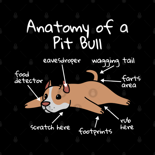 Anatomy Of A Pit Bull