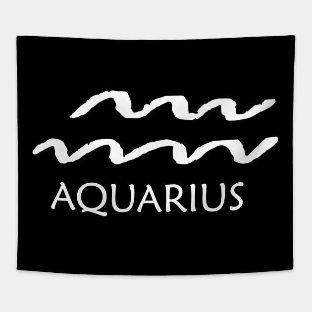Aquarius Zodiac Sign January February Birthday Gift