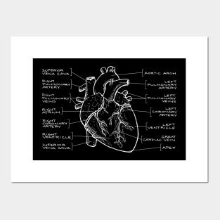 Doodle Anatomical Heart Maglia a Manica