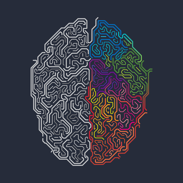 Image result for brain colorful