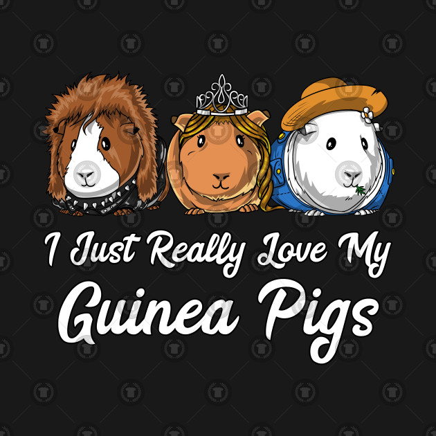I Just Really Love My Guinea Pigs Cavy Pets
