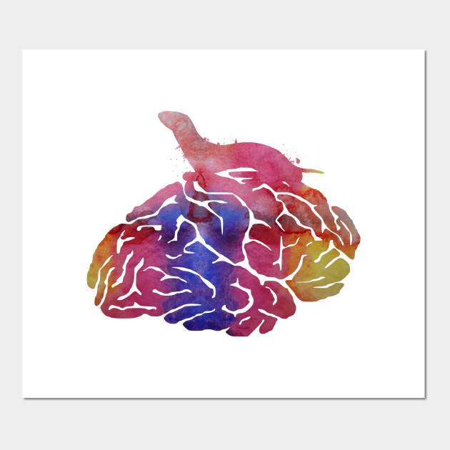 Ferret on brain - Whimsical - Posters and Art Prints | TeePublic
