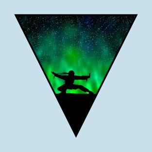 Ninja v3 t-shirts