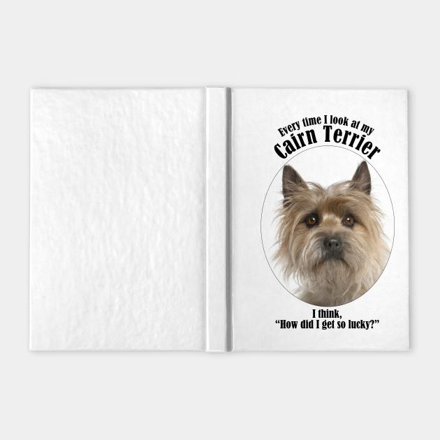 Lucky Cairn Terrier