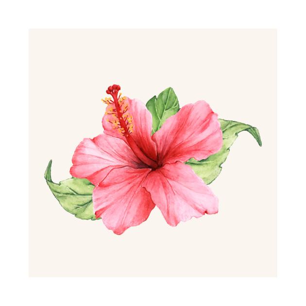 Pink Hibiscus Flower Pink Hibiscus T Shirt Teepublic