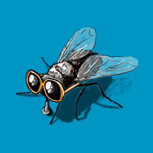 Fly Glasses
