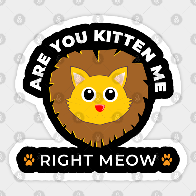 Are you kitten me right meow?