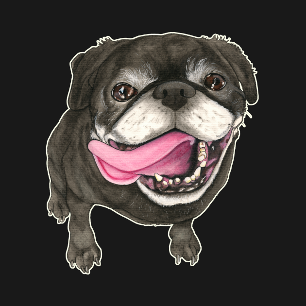 Dog Black Pug