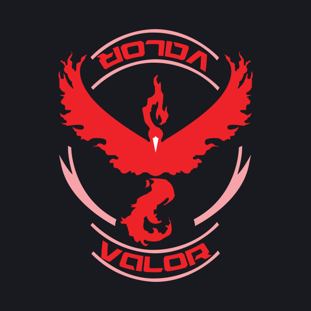 Team Valor!