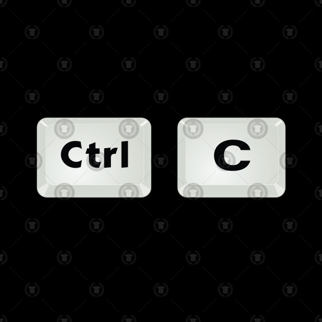 Control Copy Paste Ctrl Plus Gift Matching Couple