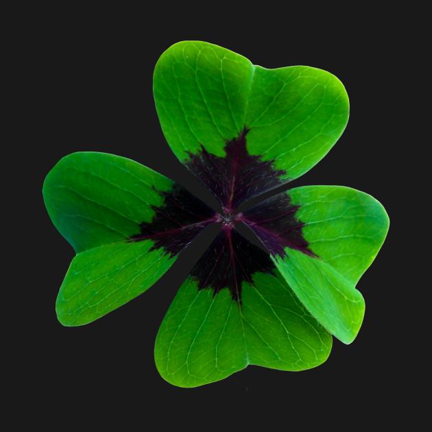 Four Leaf Clover Shamrock St Patrick's Day