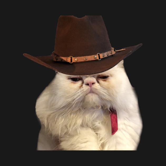 09583ef1 Cowboy Persian Cat