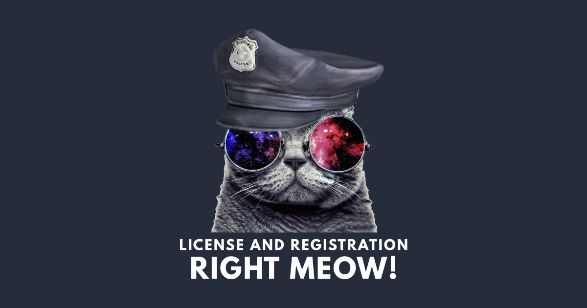 da24e11d1c License and Registration Right Meow Funny Cat - Cat - Long Sleeve T ...