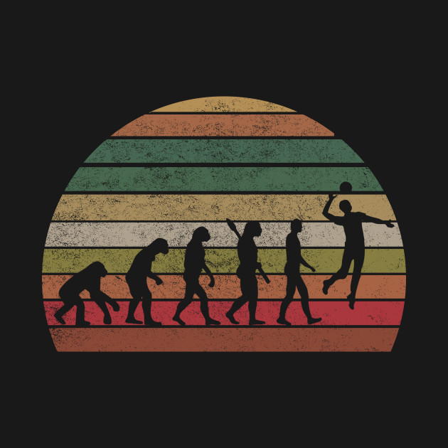 Vintage Volleyball T-Shirt Evolution T-shirt