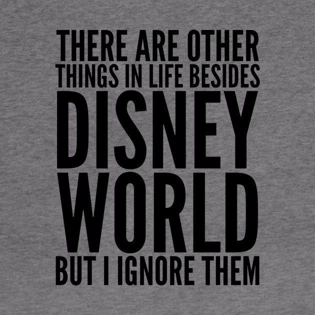 there are other things besides disney world but i ignore them