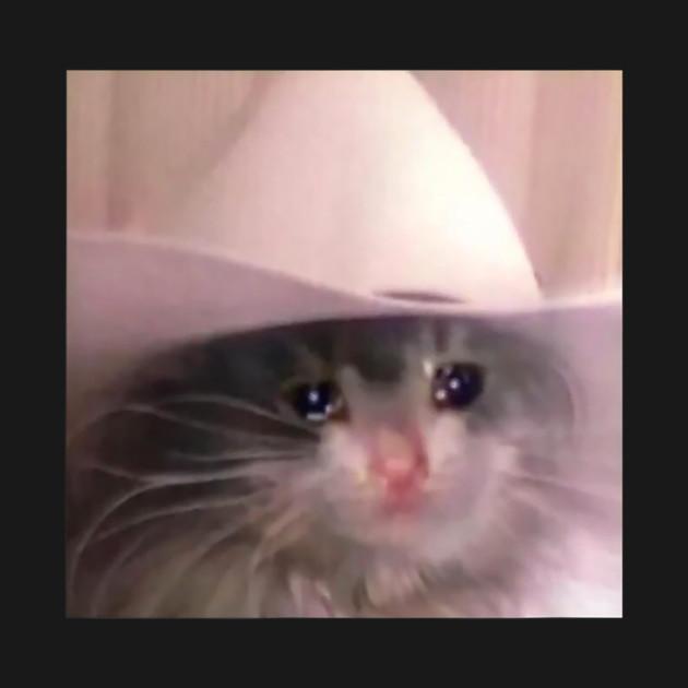 4edc57c9 sad cat cowboy hat