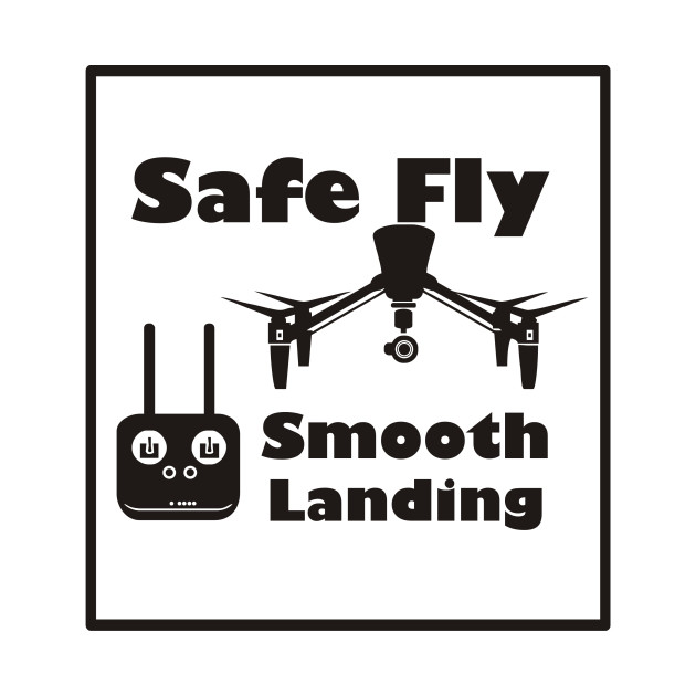 Safe Fly and Smooth Landing Inspire Version