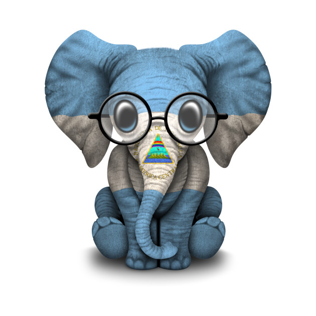 Baby Elephant with Glasses and Nicaraguan Flag