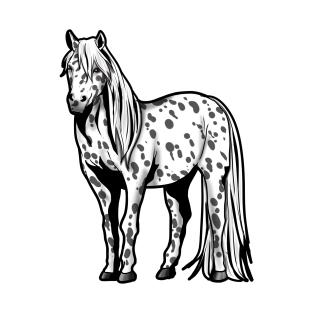 Appaloosa Horse Riding Present gift Pony Girl T-Shirt