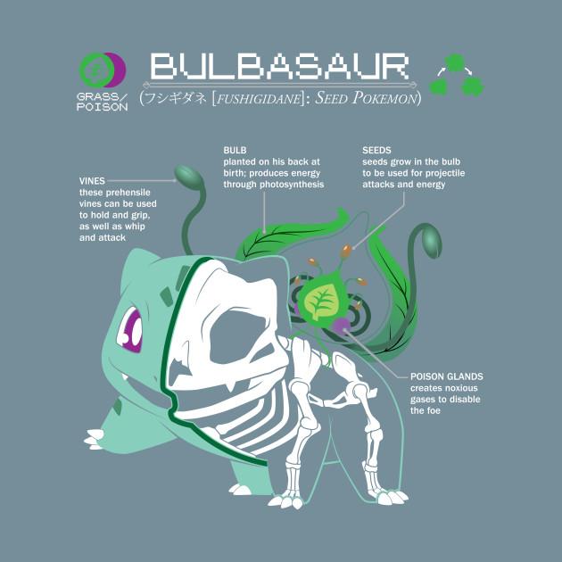 Bulbasaur Anatomy Pokedex Entry By Christopherstoll T
