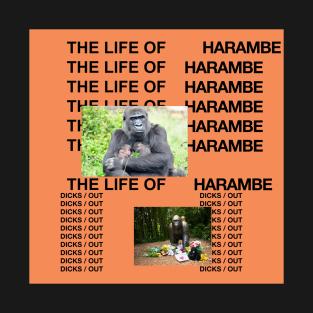 The Life of Harambe