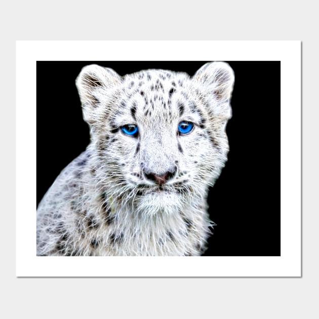 SNOW LEOPARD CAT BLUE EYES WALLART CANVAS PICTURE  18 x 32 INCH FRAMED