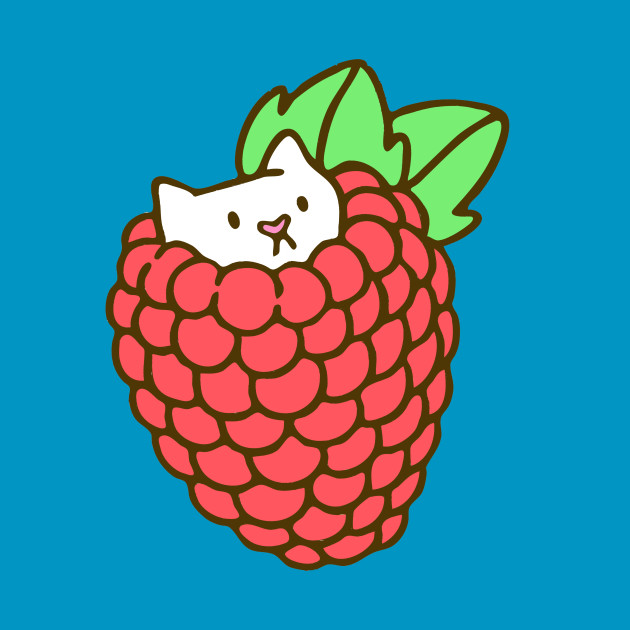 Raspberry Kitten