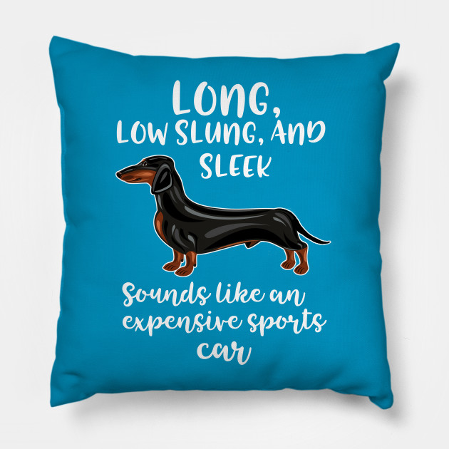Dachshund Male Long Low Sleek Expensive Sports Car Dachshund Dog