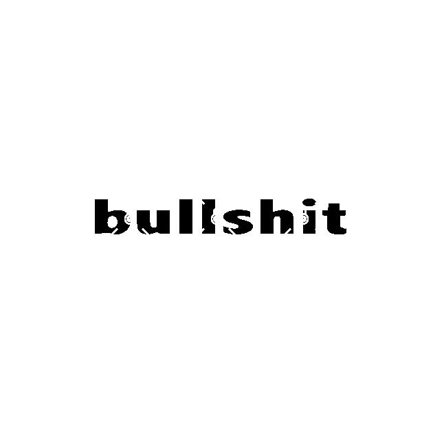 Graphic Tee BULLSHIT