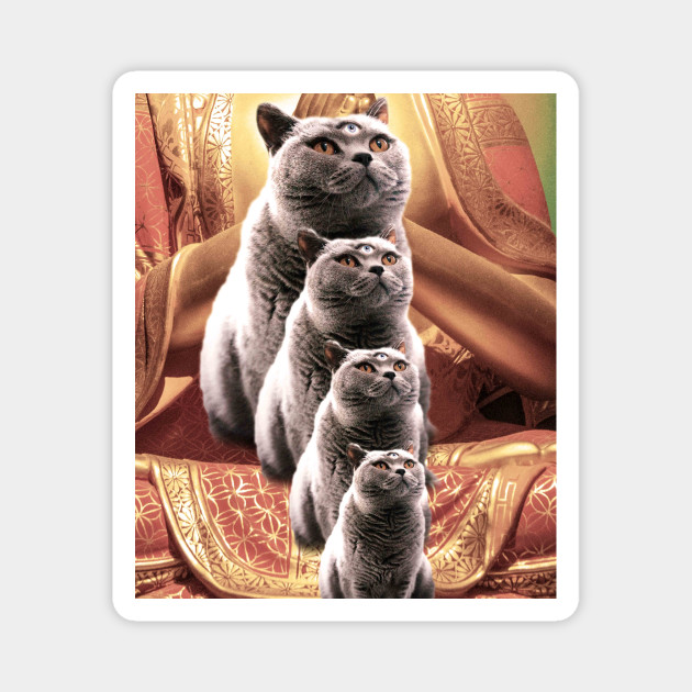 Cute Funny Buddha Cat - Third Eye Cat